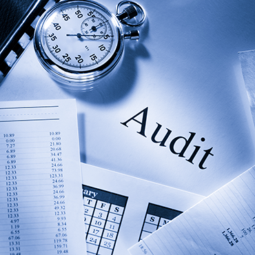 PKP Group of Companies Services - Audit & Assurance
